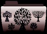 Наклейки деревья